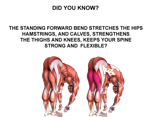 Stretch Exercise