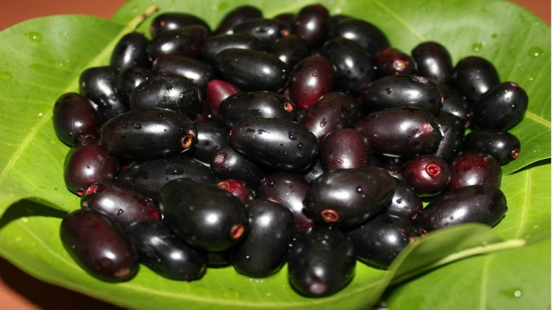Jamun Seeds For Diabetics: Here's How You Can Use Them In Your Diet