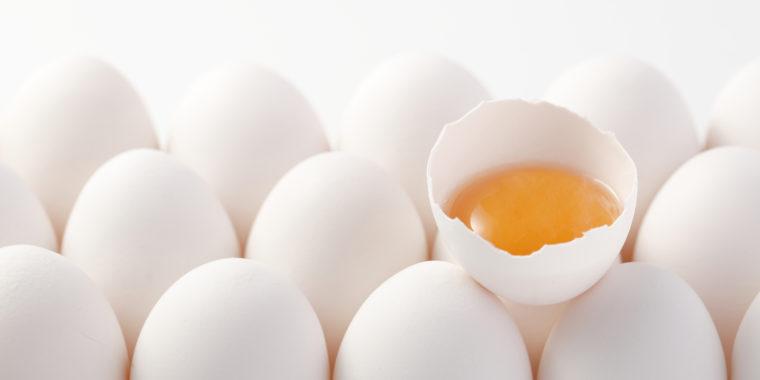 आता सोयाबिनने बनतील शाकाहारी अंडे