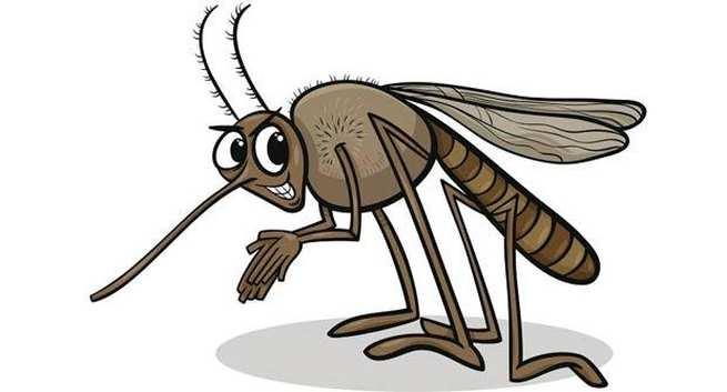 डेंगीचा 'ताप' यंदा वाढण्याची शक्यता, व्हायरसचं नव रूप अधिक धोकादायक