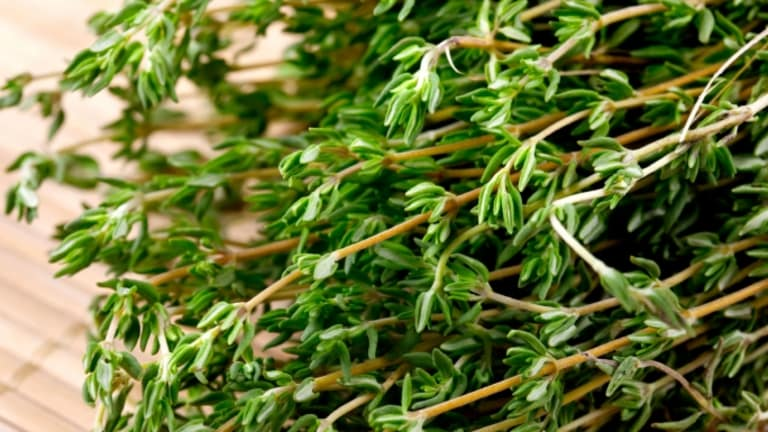 Can Thyme Help In Boosting Your Immunity?
