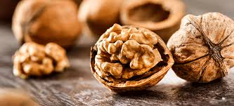 Weight Loss: 7 Reasons Why Walnuts Must Be Included In Diet To Lose Extra Kilos