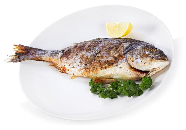 Food Combinations: Should You be Pairing Curd with Fish?