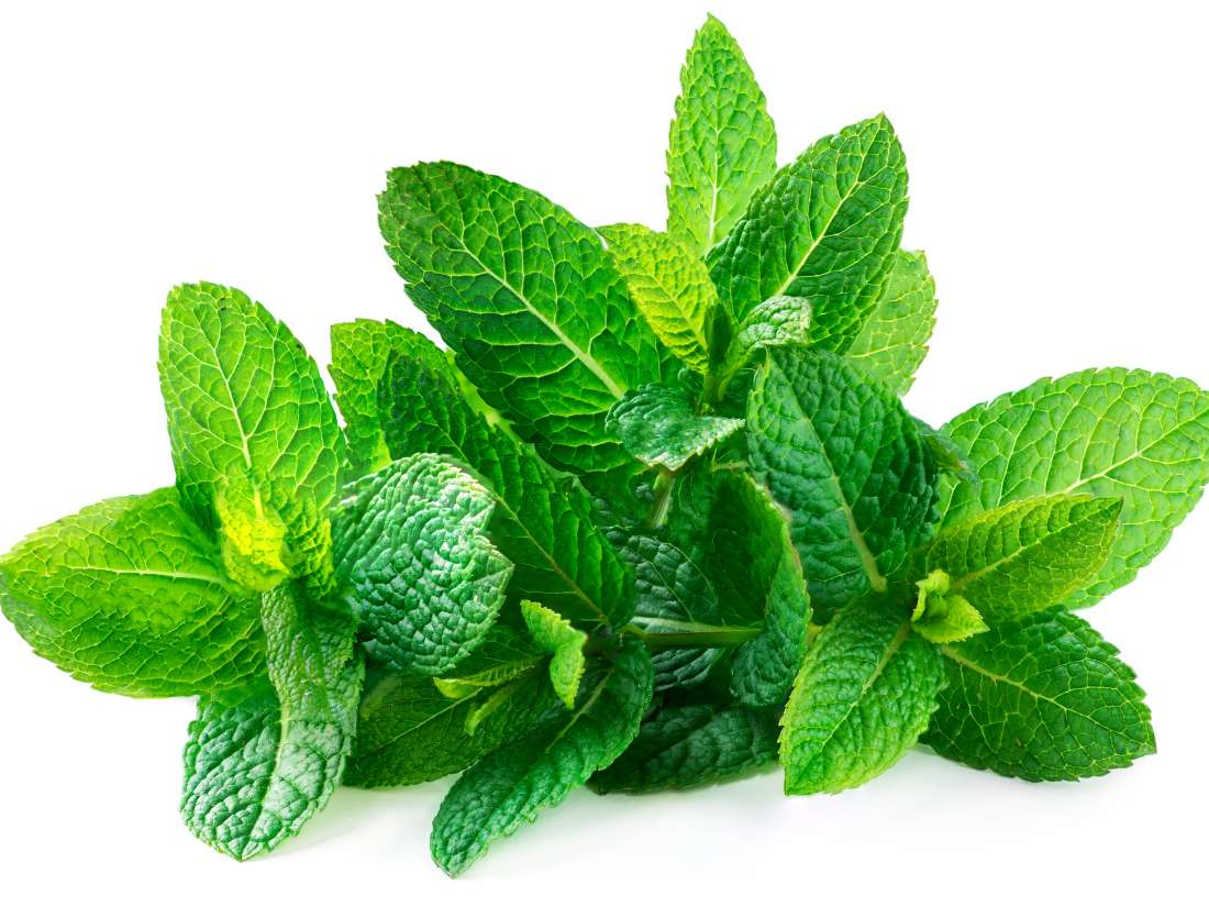 Mint For Skin: Top 5 Mint Face Packs To Fight Skin Problems In Summers