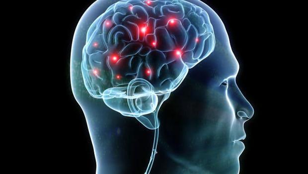 Stronger people have sharper brains: Study