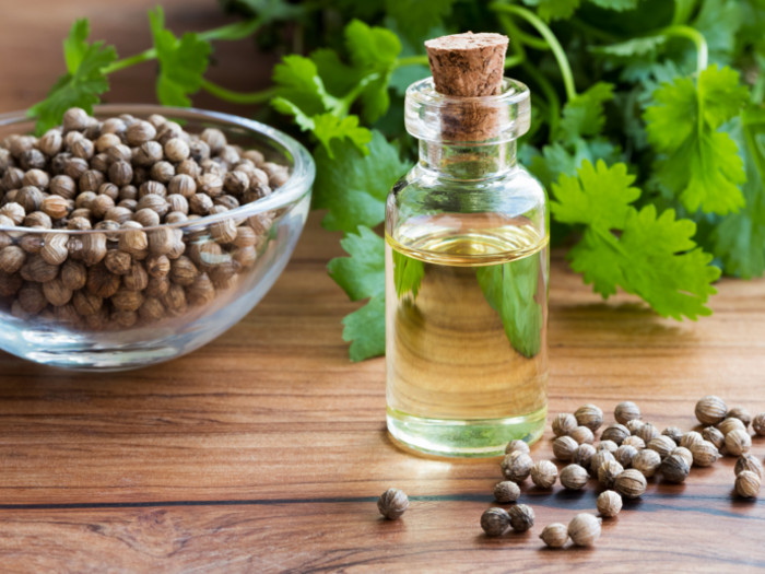 Essential coriander oil: it can aid weight loss, detoxification and more