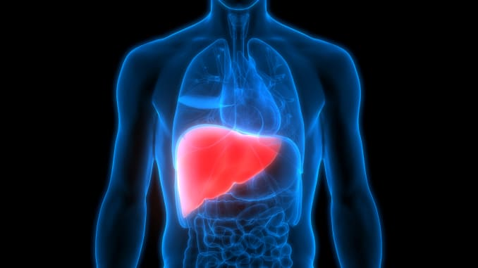 Health Tips:  To Keep Your Liver Healthy