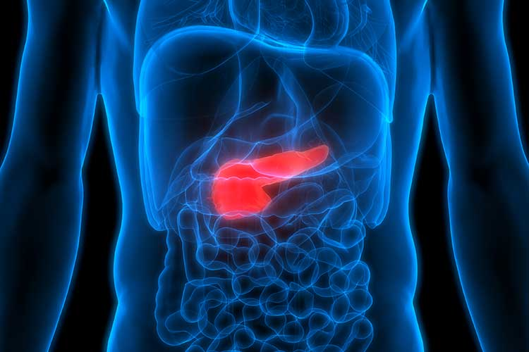 4 Ways To Keep Your Pancreas Healthy For Better Digestion