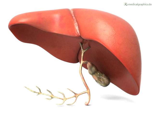 Liver diseases can be avoided if you eat healthy. Follow these diet tips