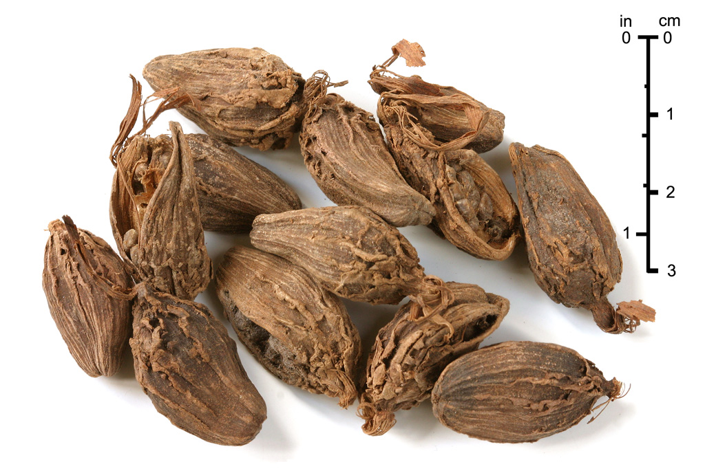 Black Cardamom For Asthma: Use This Spice To Reduce The Symptoms Of Respiratory Conditions