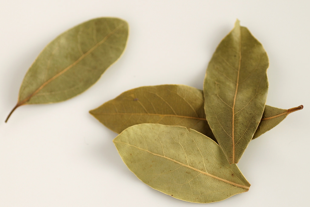 Bay Leaf (Tej Patta) Benefits: 6 Reasons Why You Should Add It To Your Delicacies!