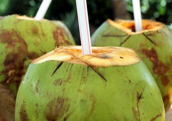 Simple Reasons To Drink Coconut Water