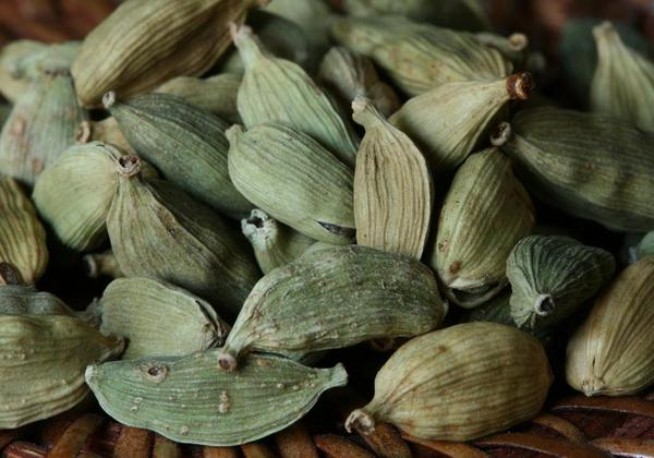 Ayurvedic Home Remedies For Nausea and Vomiting